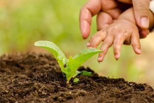 agricoltura_futuro_042108
